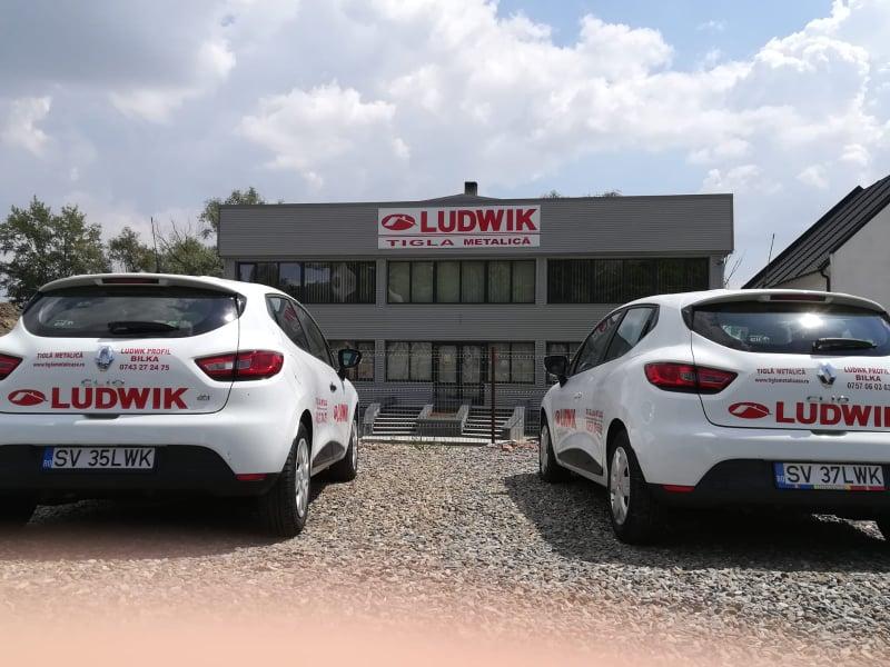 Sediu Ludwik Profil